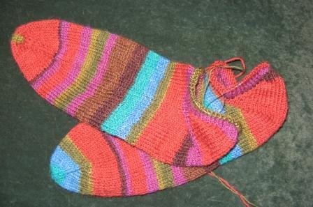 regia_socks
